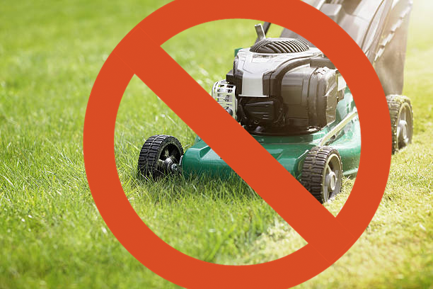 Artificial turf doesn't require you to mow